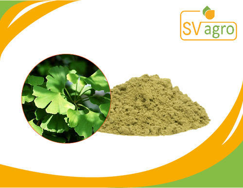 sv agro ginkgo leaves extract pack size 25 kg rs 2800 kilogram