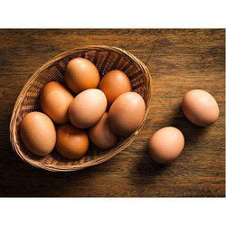Brown Hatching Egg, Packaging Type: Tray