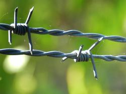 Black Hot Dipped Galvanised Barbed Wire, Size: 2.00mm To 2.50mm, Material Grade: Mild Steel Galvanised