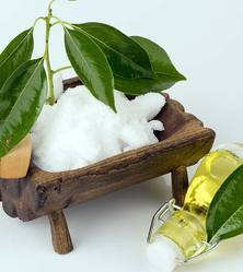 Essential Camphor Oil