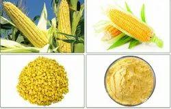 A Grade Freeze Dried Corn