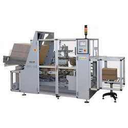 Case Packer for Food Industry