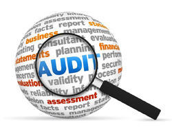 Data Auditing Services