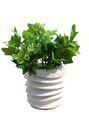 Garden Planter - P 34