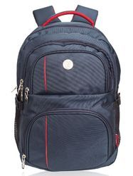 Blue Wellington Large Casual Backpack Bag