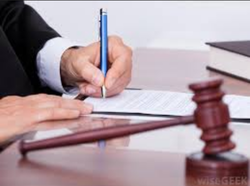 Writ Appeal Legal Service