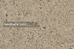 1301 Haystack Rock