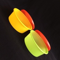 Disposable Plastic Coloured Food Container 250 ML