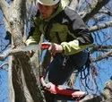 UV-32E-W Pruning Saw  For Arborist
