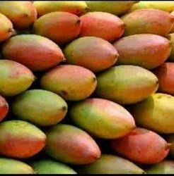 Chinna rasalu Yellow Nuzvid Collector Mango
