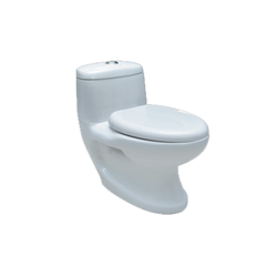 One Piece Toilet 107