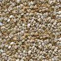 Natural Sesame Spices