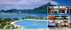 Domestic Tour Packages Services