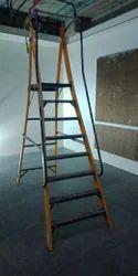 FRP Industrial Ladder