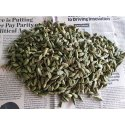 7mm Green Cardamom, Cardamom Size Available: 7 Mm, Packaging Type: Pp Bag