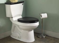 Visible Trap Way Types of Toilets