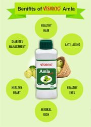 VISIONO Amla Juice, Pack Size: 500 ML