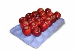 Paper Tray Apple 30 Compartment