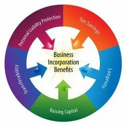 Consulting Firm IT and Consulting Company Incorporation Service