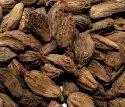 Big Black Cardamom / Organic Black Cardamom / Jangli Elaichi / Boro Elach / Badi Elaichi