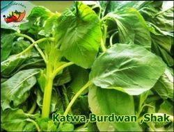 Fresh Katwa Burdwan Data Shak