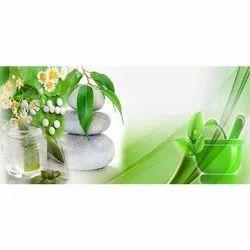 Ayurvedic & Herbal PCD Pharma In Rewa
