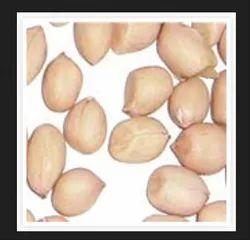 White HPS Groundnut Kernels