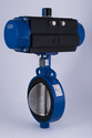 Manual Cast Iron Actuated Butterfly Valves