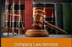 Company Law Service