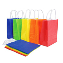 Colorful Shopping Paper Bag