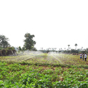 Rain Pipe Irrigation System