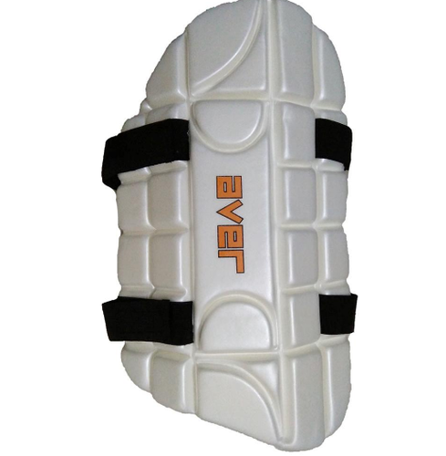 02b85d644 Cricket Accessories - SS R-7 E.w. Catch Practice Bat Manufacturer from  Meerut
