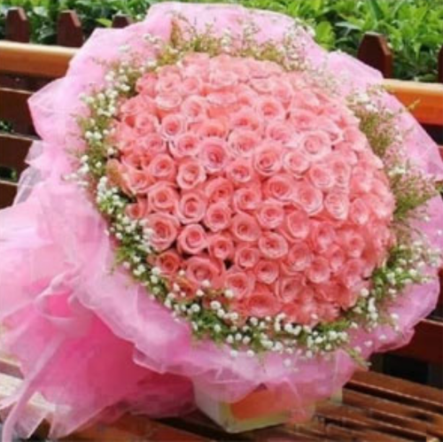 500 pink roses at rs 12500 bunch rose flower id 16581069548 500 pink roses mightylinksfo