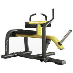 Seated Calf Machine