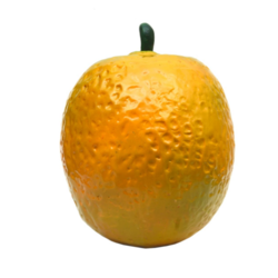 An Learning Model Orange