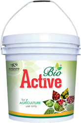 Bio Active Humic Acid Powder