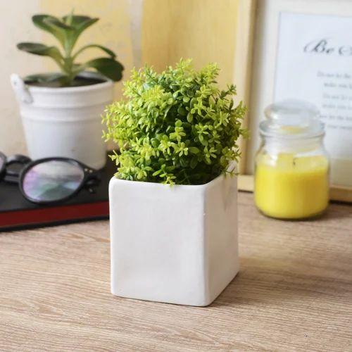 White Square Glazed Ceramic Table Top Planter Pot Size 2.5 X 2.5 X 3 & White Square Glazed Ceramic Table Top Planter Pot Size: 2.5 X 2.5 X ...
