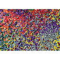 Multicolor HD Plastic Granule
