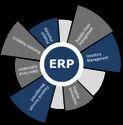 Erp Customization Services