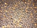 Granules 580 G/l Grade Black Pepper, For Spices