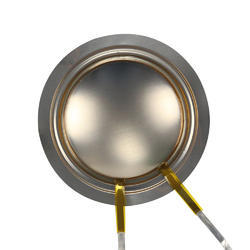 Flat Speaker Diaphragm