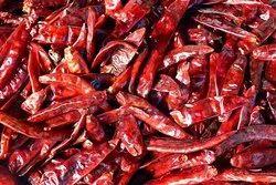 Guntur Dry Red Chili, With Stem