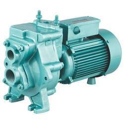 CRI 2 - 5 hp Single Phase Water Pump