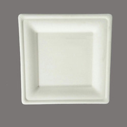 Disposable Square Plate