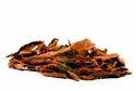 Cinnamomum Verum/ Ceylon/ Cinnamon Bark