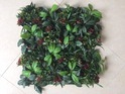 Vertical Green Wall Hedge