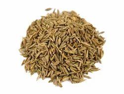 Caraway Seeds (Carum Carvi), Shajeera No .2