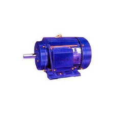 Induction Electric Motors