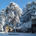 Chandigarh- Manali Tour Package