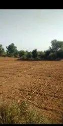 38 Bigha Land Near NH-8 Jaipur